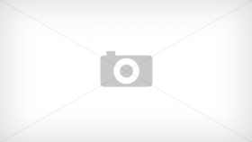 Пружина диска тормоза (1 компл./16 шт.) для гусеничный экскаватор HITACHI ZX870-3 (0747307)